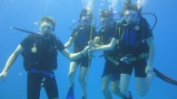 "If you want to dive in Javea, you can contact our dive Centre ""Buceo Pelicar"". We have a  large experience in Dive in Javea and Filipines. We speak english and..."